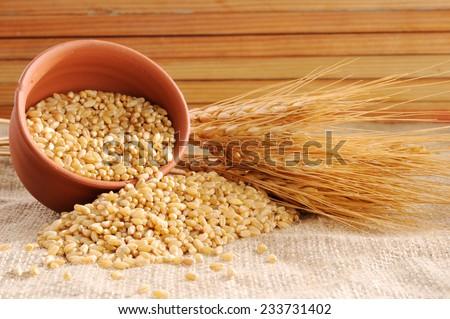Wheat grains ,Grain of the wheat , whole wheat grains,
