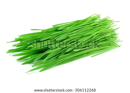 wheat grass isolated on white background #306112268