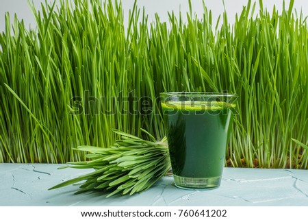 wheat grass juice on table. Green organic wheat grass drink with wheat grass background,young grass stage. #760641202