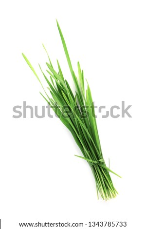 Wheat grass on white background, top view #1343785733