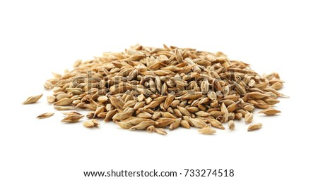 Wheat grass seeds on white background #733274518