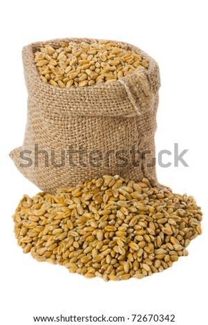 Wheat in small burlap sack #72670342