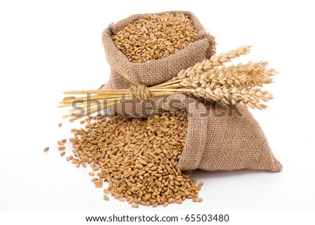 Wheat in small canvas sacks