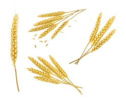 Wheat isolated on white. without shadow. set
