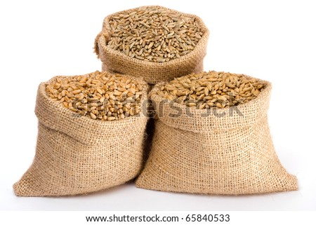 Wheat, rye and barley in small burlap sacks