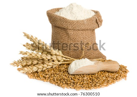 Wheat seed and flour in small burlap sack