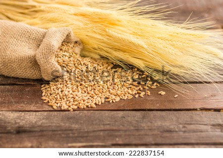 wheat seeds in a canvas sack on a wooden surface #222837154