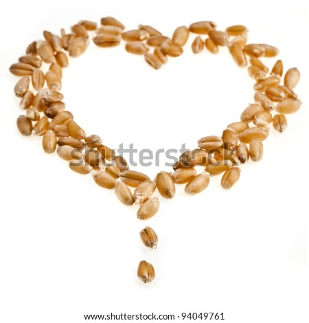wheat sprout  in shape heart Isolated on white background