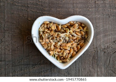 Wheat sprouts in a white heart shaped bowl on a wooden  background.Wheatgerm.Healthy diet, vegetarian food or superfood concept with copy space.Selective focus. Stock photo ©