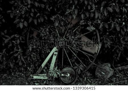 Wheel in the vegetation #1339306415