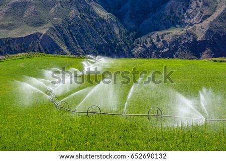 Wheel line sprinkler irrigation of a field and meadow on green farmland #652690132