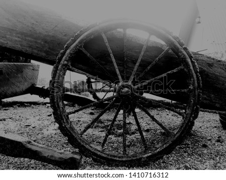 Wheel of a wheel cart used for transporting things #1410716312