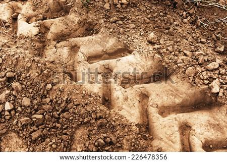 Wheel tracks on dirt #226478356