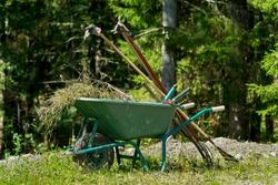 Wheelbarrow with weeds and garden tools