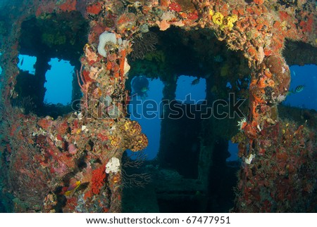 Wheelhouse of a shipwreck encrusted with coral growth,used as an artificial reef, picture taken in Broward County Florida.