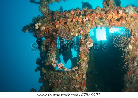 "Wheelhouse of an artificial reef named the ""United Caribbean"".  In the waters off Deerfield Beach, Florida. This wreck tilled at on its side picture taken looking straight up at the surface."