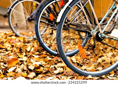 Stock Photo Wheels of bicycles parked in autumn leaves