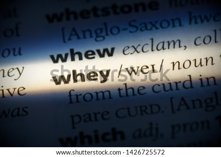 whey word in a dictionary. whey concept, definition.