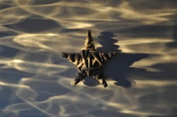 Whicker star in refracted sunlight