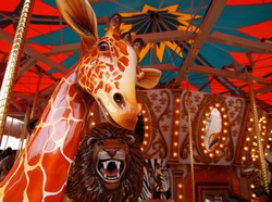 Whimsical Carousel