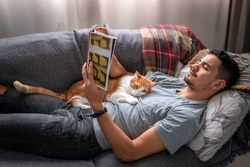 white and brown cat falls asleep on its owner who reads lying on a sofa under the window