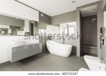 White and grey exclusive big washroom with fancy bath