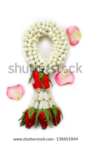 White and red flowers isolated on a white background, for design
