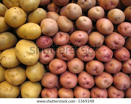 white and red potatoes for sale