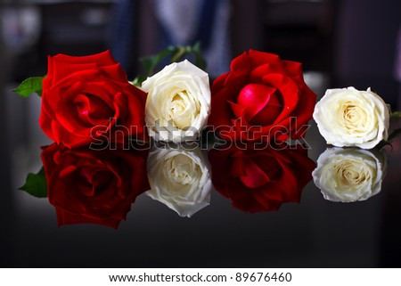 white and red rose as background