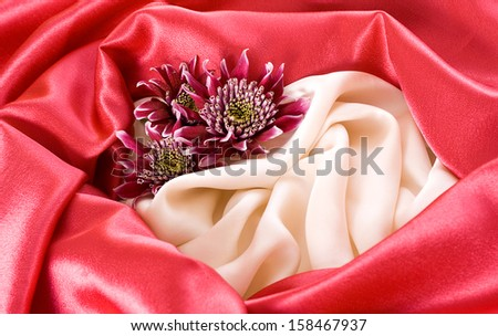 White and red silk background with red chrysanthemum