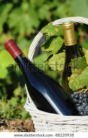 white and red wine in a basket with grapes