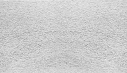 white animal hair texture