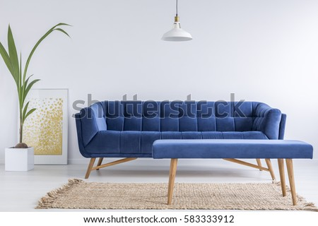 White apartment with blue sofa, bench, rug and green plant