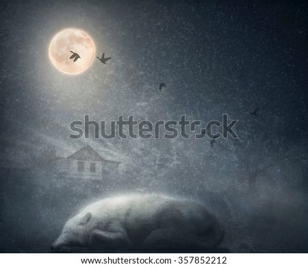 Stock Photo White arctic wolf sleeping under the moon. The concept in low key with vintage texture