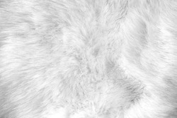 white artificial fur texture