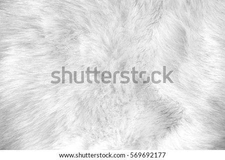 white artificial fur texture #569692177