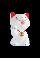White asian fortune cat on black background