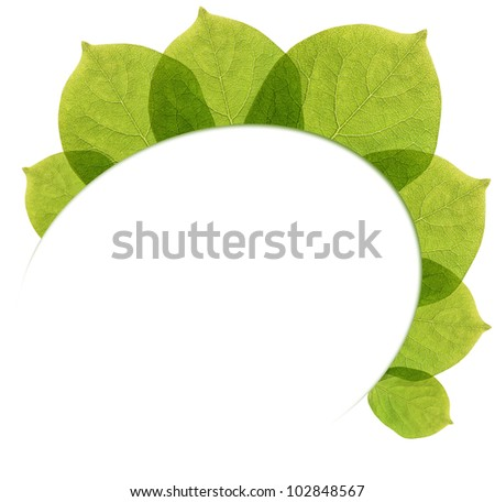 White background with leaves in transparency