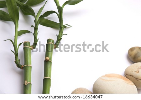 white background with two bamboo and stones with space for advertising Foto stock ©