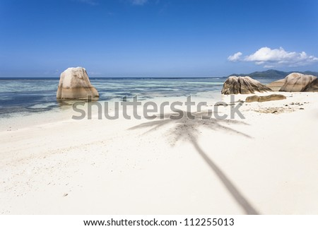 White beach with the shadow of a coconut palm, La Digue, Seychelles
