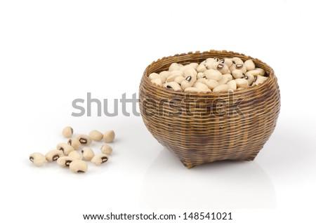 White bean (Bruguiera cylindrica)