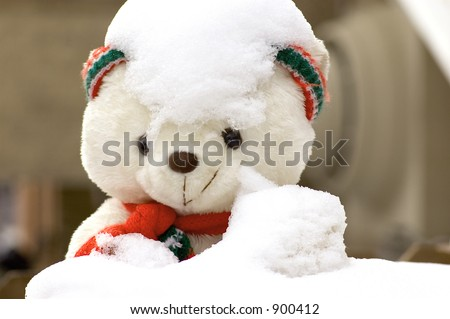 white bear stuffed animal with snow covering