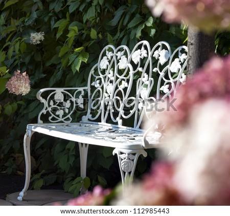 White bench in a summer garden