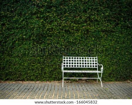 White bench in lush garden
