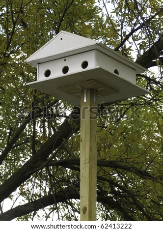 White birdhouse without birds by large tree early in autumn