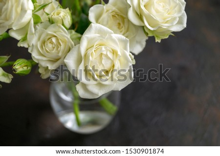 white blooming roses on a dark background. #1530901874