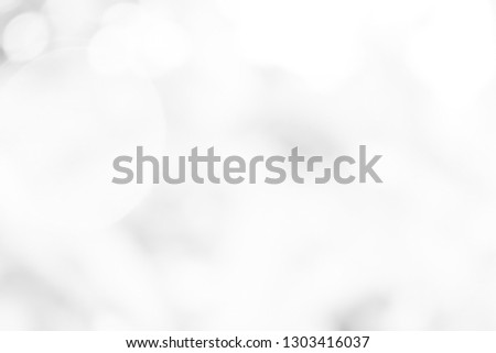 white blurred backdrop of nature, circle white wallpaper, gray bokeh background #1303416037