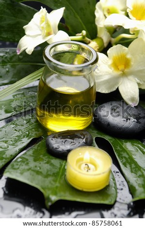 White branch orchid and bottle of oil with candle on green wet leaf - stock photo