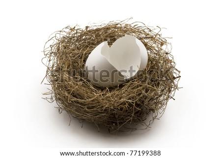 white broken egg shells in the nest. Concept of finance, broken personal savings, retirement or investment.