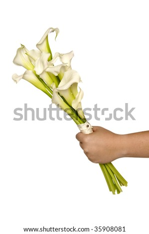 stock photo White Calla Lilly bridal bouquet in the brides hand isolated